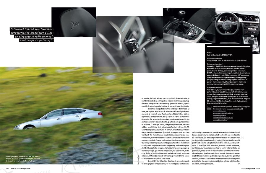 Audi 30 copy