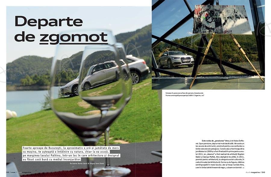 Audi 42 copy