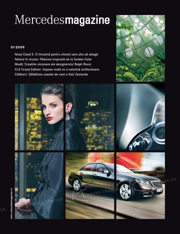 Mercedes 1 copy